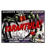 Polly rare tarantula thumbtall