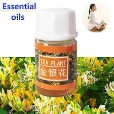 3ml Pure Essential Oils  image 5