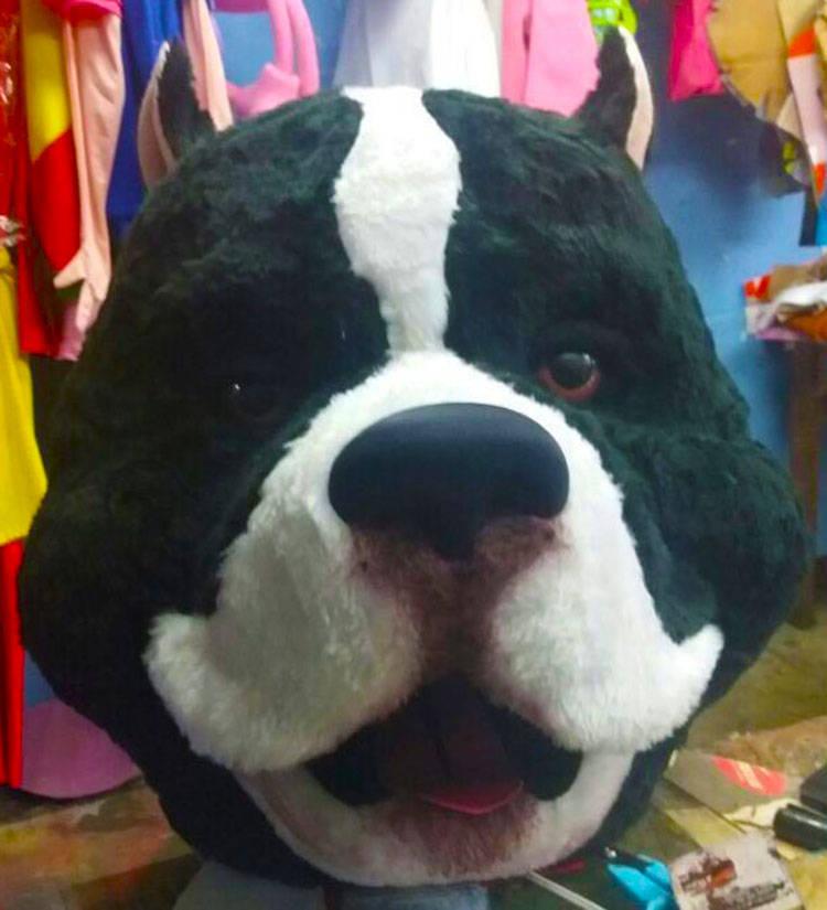 Pitbull Mascot Costume Adult Animal Costume For Sale
