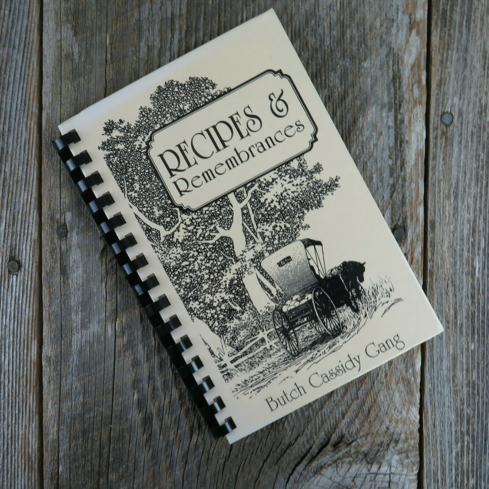 Primary image for Vintage Idaho Cookbook Recipes and Remembrances Butch Cassidy Gang 1995