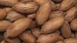Pecans, Crispy and Fresh Fancy in shell 10 lbs. by Presto Sales LLC - $63.11