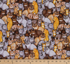 Cotton RJR Meow Mix Packed Cats Felines Animals Fabric Print by the Yard... - $10.95