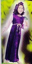 VELVET Harvest Princess 4/6 Child Costume - $29.00