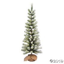 Vickerman 4' Frosted Jack Pine Tree - $104.00