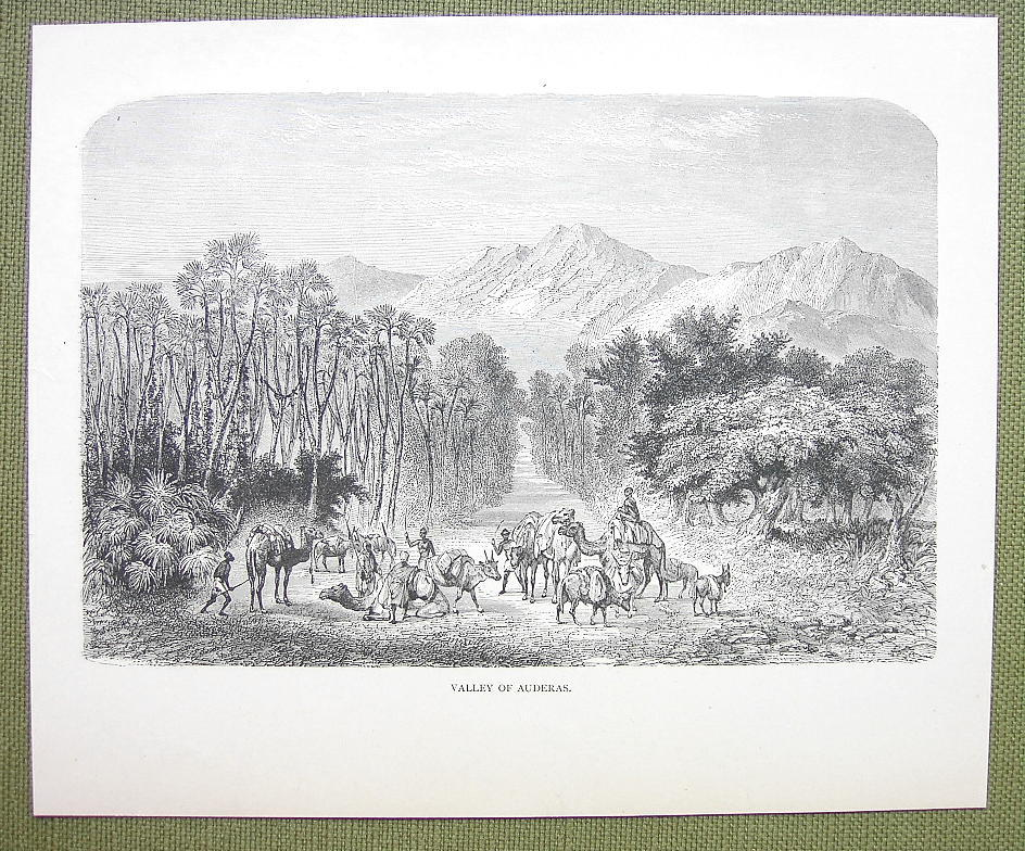 AFRICA Niger Valley of Auderas Air Mountains - 1858 Engraving Print