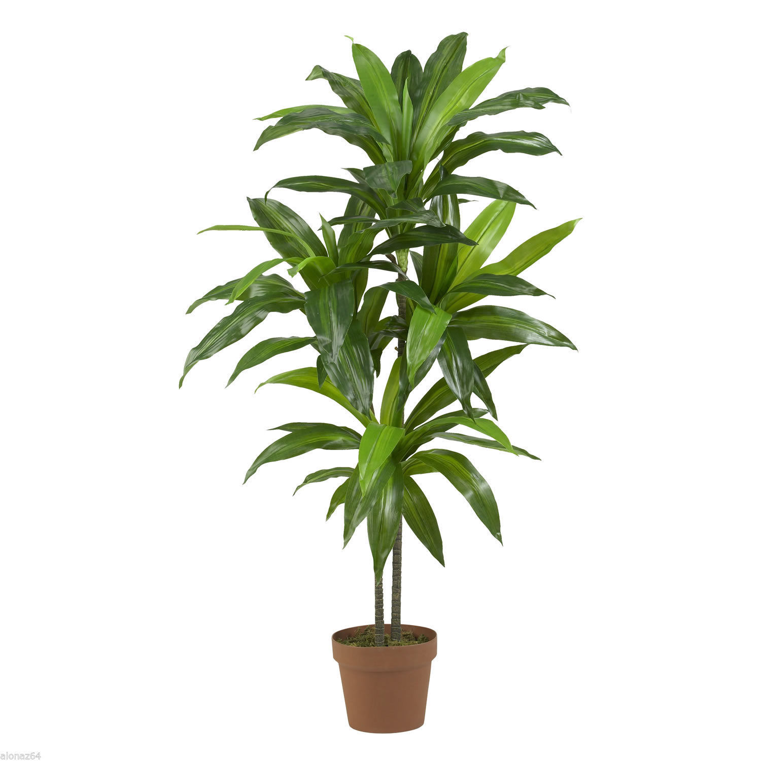 "Nearly Natural 48"" Dracaena Silk Plant (Real Touch) in Green"