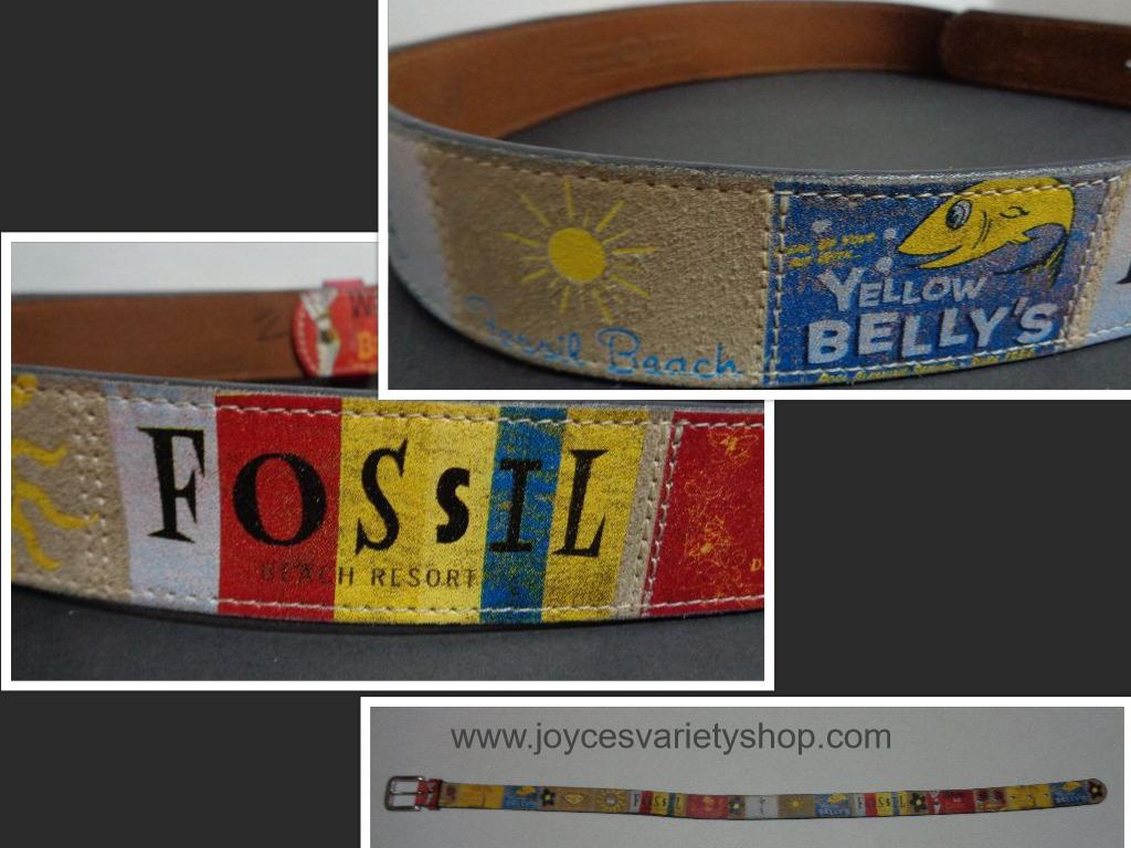 Fossil belt collage