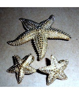 Monet Star Fish Brooch and Earring Set -VIntage      - $9.90