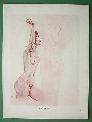 NUDE Woman's Study  by Otto Greiner - 1912 Lichtdruck Print
