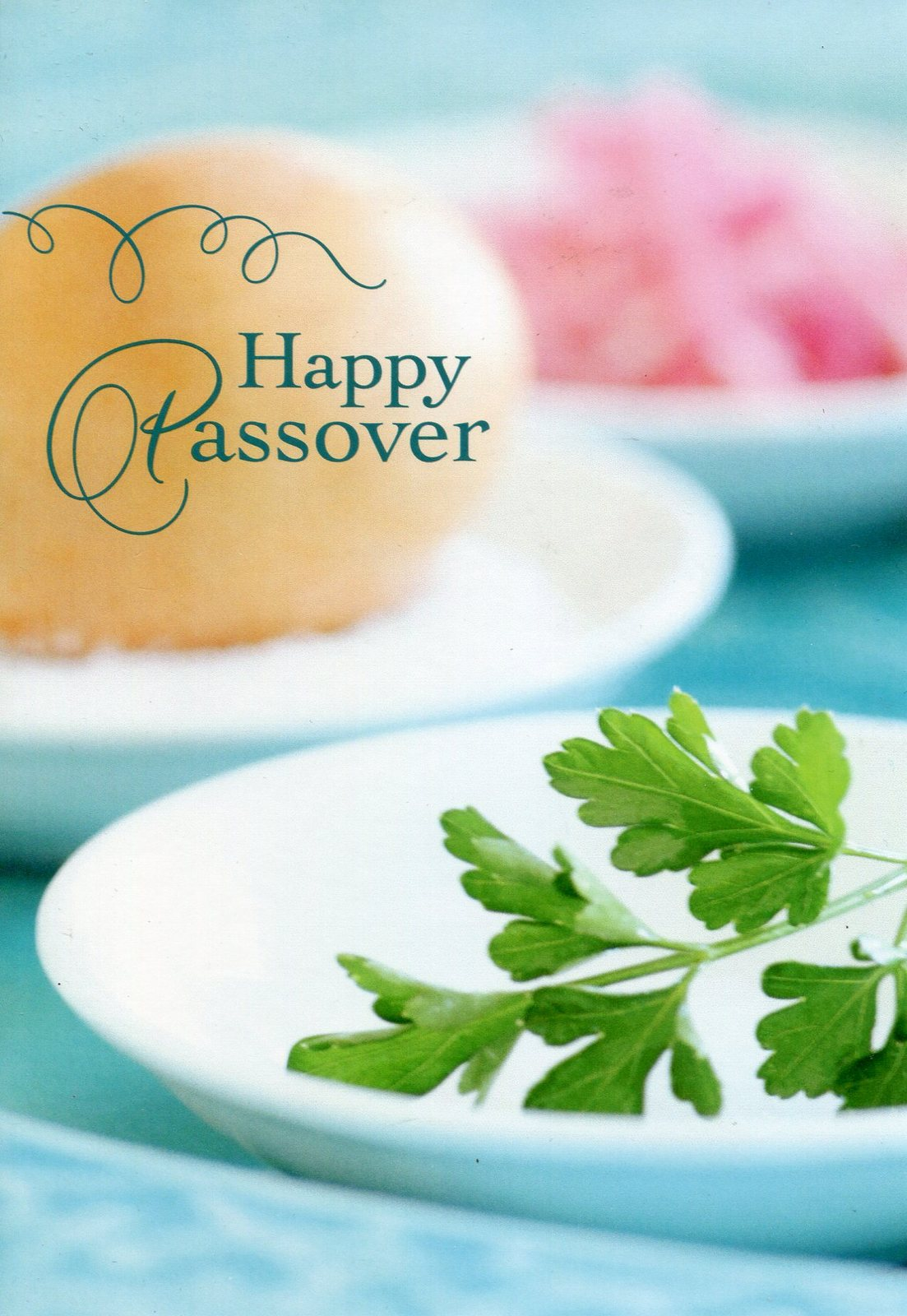 "(1) One Greeting Card Passover ""Happy Passover"""