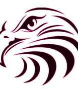 Eagles head vinyl decal sticker outdoor ready to apply weather resistant - £6.18 GBP