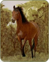 Heavy Soft Plush Warm Queen PAINTED TROTTING HORSE Bedroom Bed Blanket 7... - $66.95