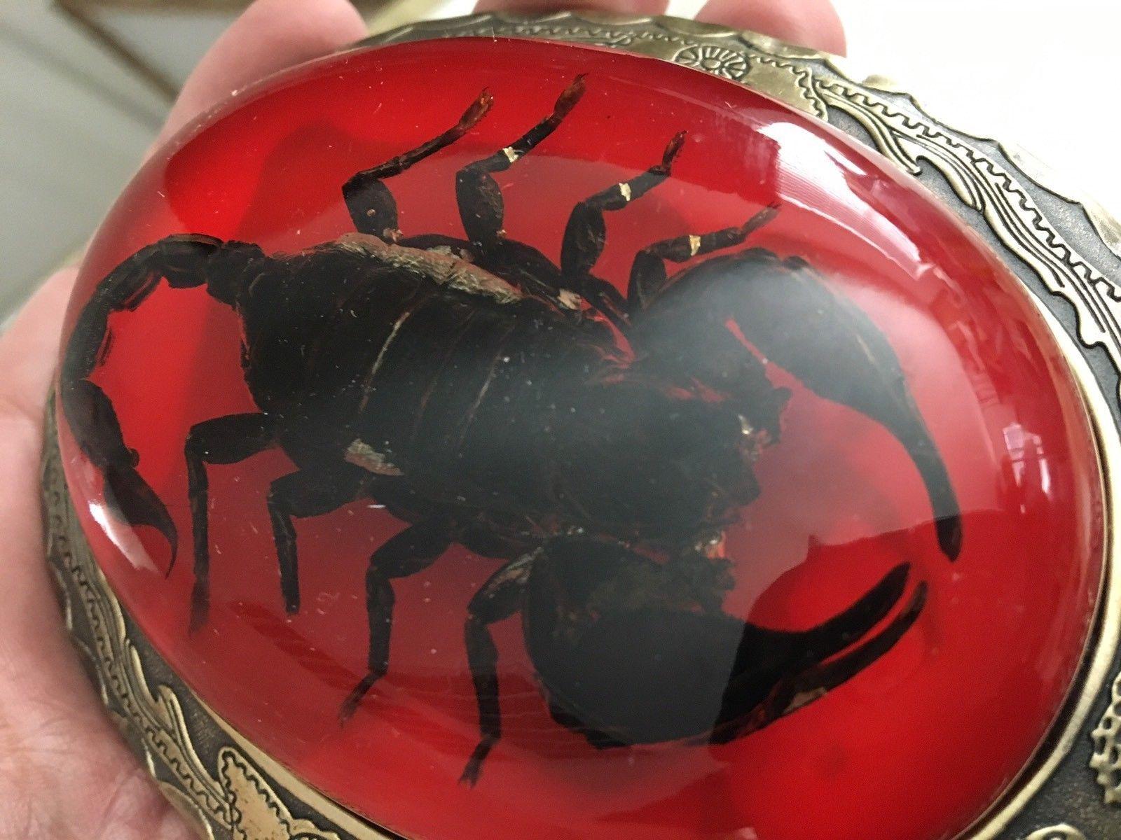 Scorpion Yellow Enamel Metal Belt Buckle