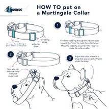 2Hounds Martingale Collar & Leash Welcome Back 80's Medium NEW! image 4