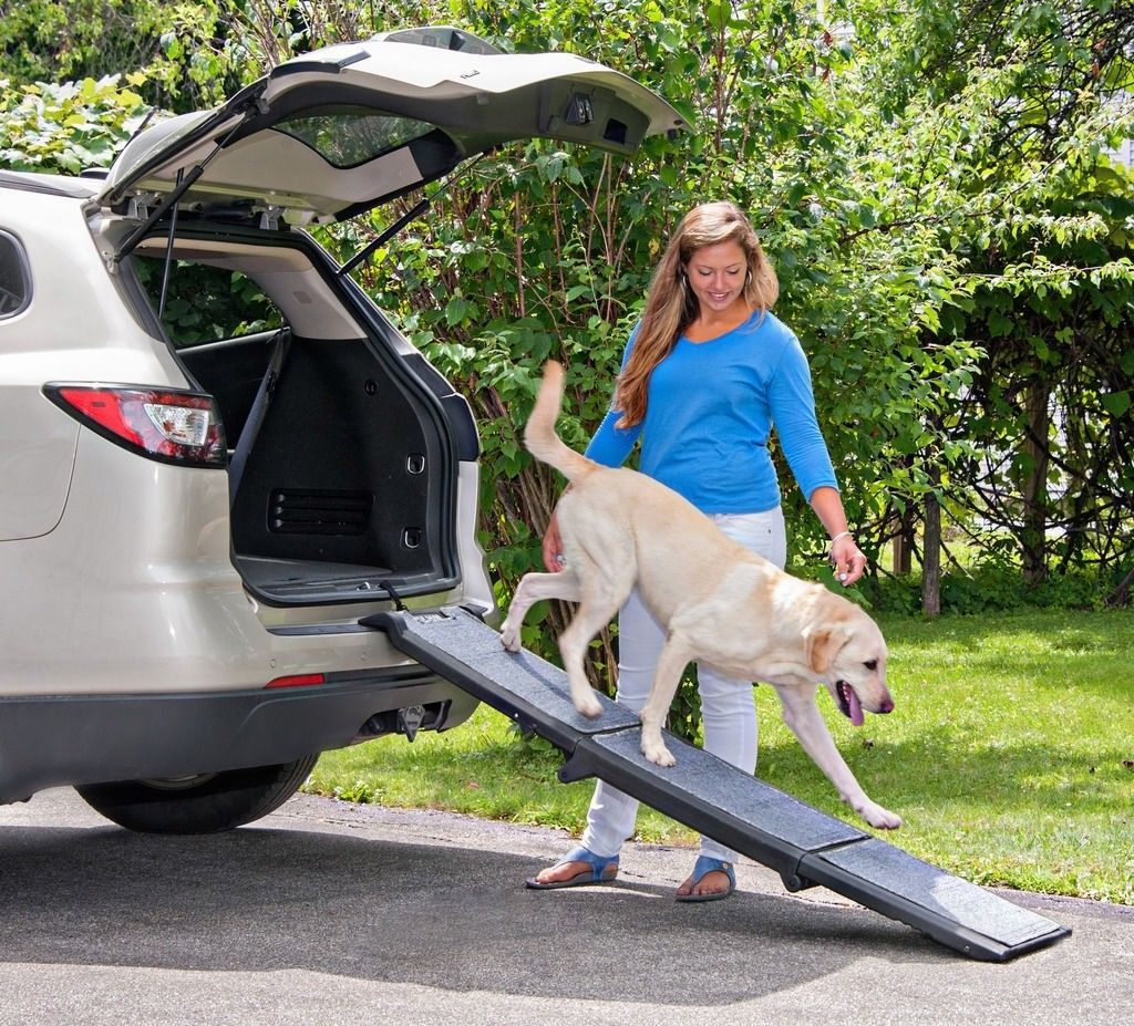 Pet Gear Carpeted Tri-Fold Ramp - PG9371CR