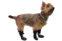 Walkin' Dog Boots, Set of 4    Medium/Large - $33.11