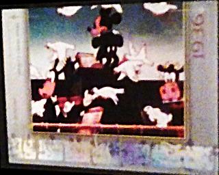 2003 Disney Mickey mouse Filmography Walt Disney Treasures card number mm16