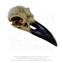 Corvus Alchemia Raven Crow Skull Resin Statue Decor V16 Alchemy Vault 6.... - $20.00