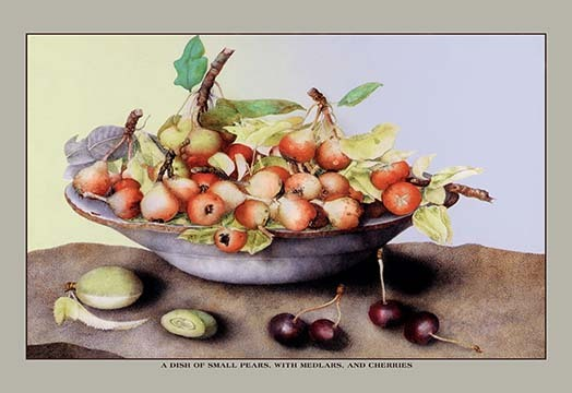 Primary image for A Dish of Small Pears With Medlars and Cherries by Giovanna Garzoni - Art Print