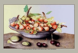 A Dish of Small Pears With Medlars and Cherries by Giovanna Garzoni - Art Print - $19.99+