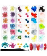 Silpecwee 60Pcs Starry Nail Dried Flower Set With 1Pc Tweezers 36 Colors... - $16.82