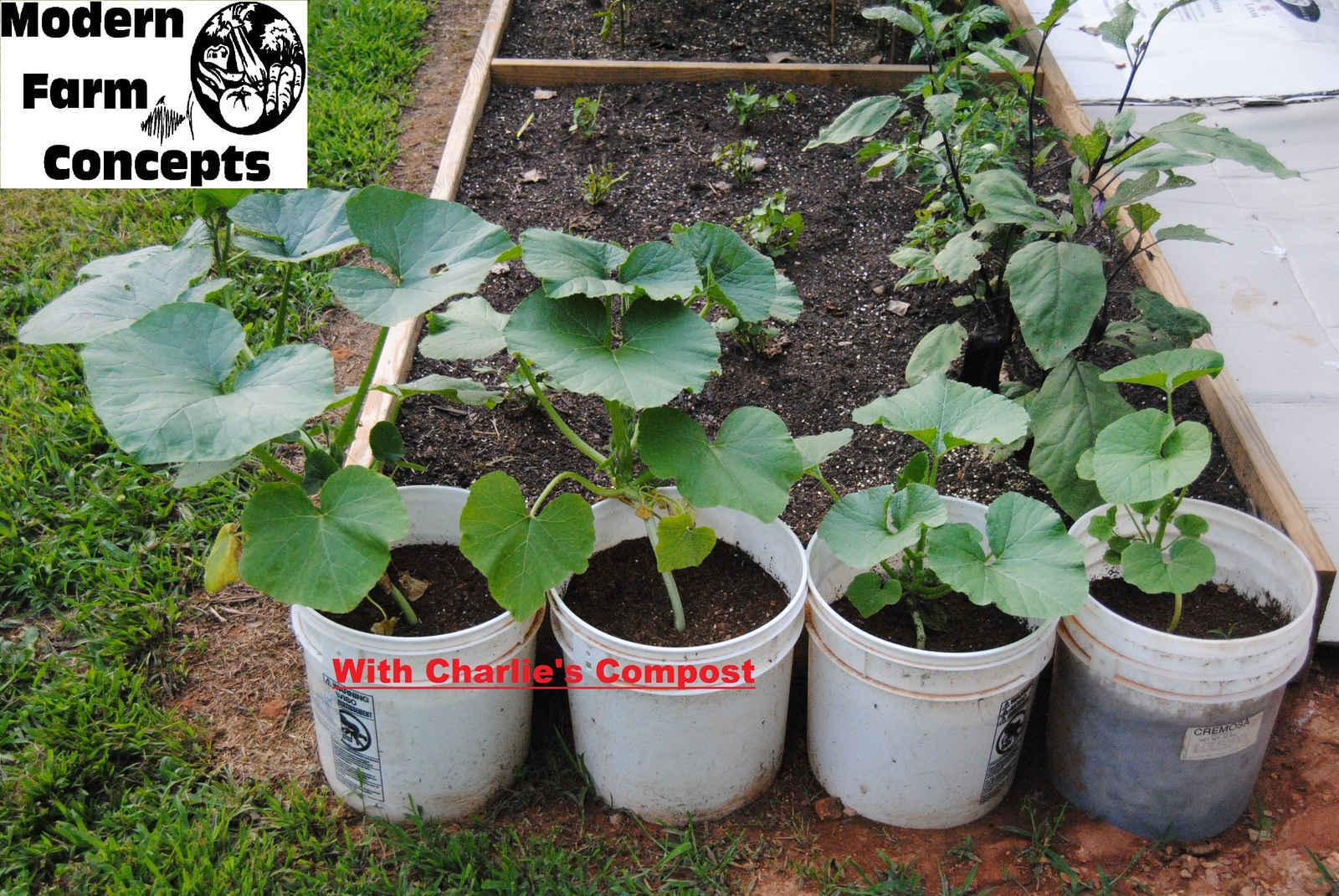 25 lbs charlie 39 s compost natural organic chicken manure fertilizer other plant care - Organic flower fertilizer homemade solutions ...