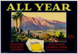 Orig 1930s All Year Brand Lemons California Fruit Crate Label Fillmore Lemon Vtg - $19.95