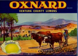 Oxnard Lemon Ventura Lemons Fruit Crate Label California Mission Sunkist 1920s - $19.95