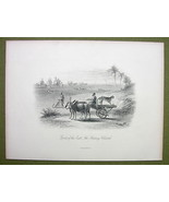 INDIA Hunting Cheetah Sports of East - 1880s Antique Print Engraving - $17.82