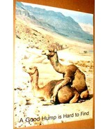 A GOOD HUMP IS HARD TO FIND 1979 Poster - $9.98