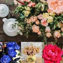 Mehrjährige Pflanzen Samen Blumen Samen Rose Blumensamen W2YN - $2.08