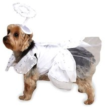 Casual Canine Angel Paws Dog Costume, X-Small, White - $34.95