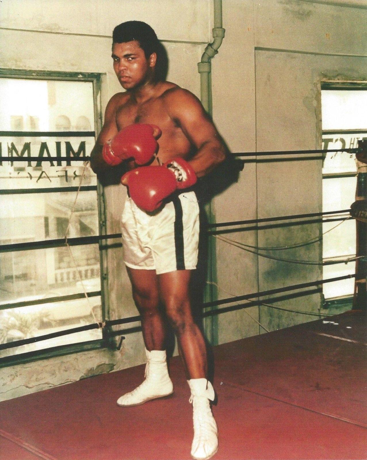 muhammad ali coloring pages - muhammad ali gym vintage 16x20 color boxing memorabilia