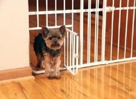 Mini Dog Gate Small Pet Puppy Safety Home Metal Expandable Folding Fence... - $36.89
