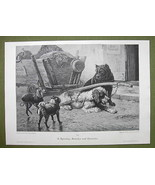 DOGS Lazy & Hard Working- VICTORIAN Era Print - $22.76