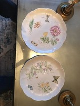"""2 Lenox Butterfly Meadow 10.75"""" Dinner Plates SWALLOWTAIL & DRAGONFLY NEW - $24.70"""