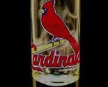 """St. Louis Cardinals MLB """"Hype"""" Tall Shot Glass"""