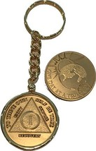 1 Year AA Medallion & One Day At A Time Universe Chip In Removable Gold Plate... - $13.85