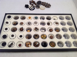 Assorted Lot of 40+ Sewing Buttons Antique Vintage w/ 5x10  Display Case image 9