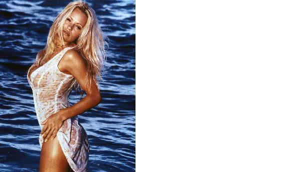 Pam Anderson Baywatch 30C Vintage 11X14 Color TV Memorabilia Photo