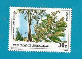 Rwanda (mint no gum postage stamp) Trees 1979 Scott #916 - $1.99