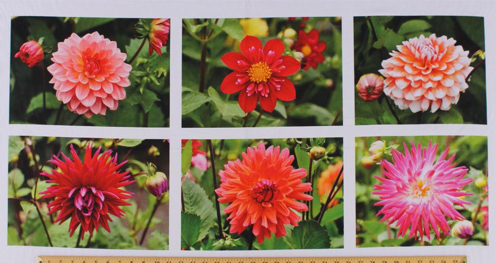"23.5"" X 44"" Panel Just Dahlias Flowers Floral Spring Cotton Fabric Panel D487.14 - $9.75"