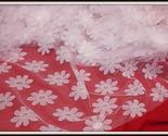 Pink light daisy net 6 thumb155 crop