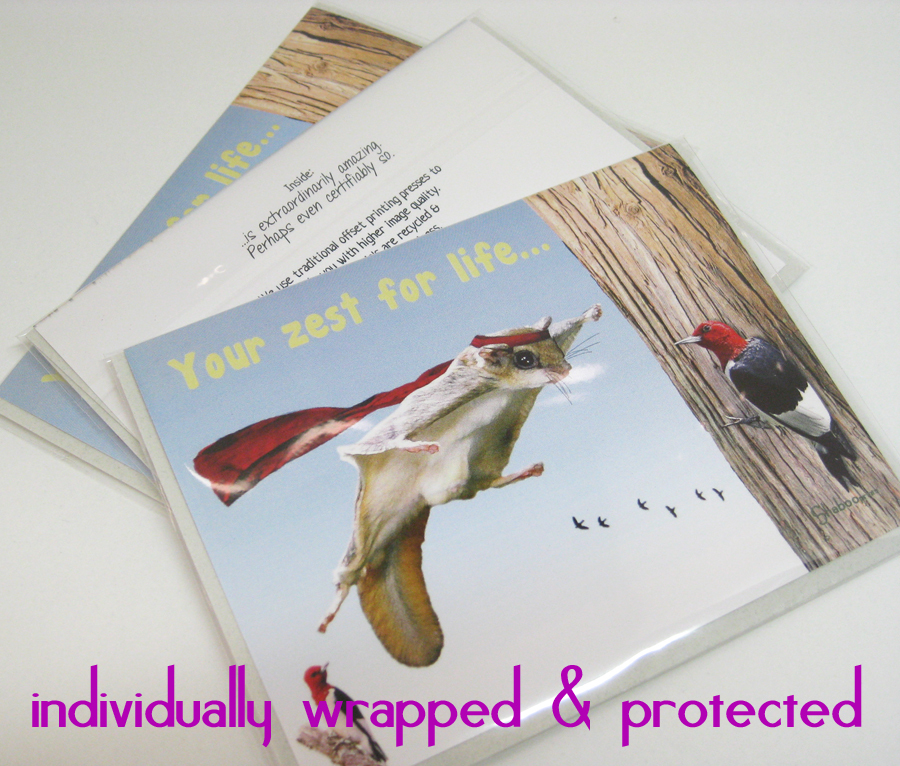 Funny Flying Squirrel Thinking Of You Card: Amazing You By Shaboo Prints