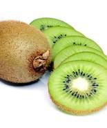 Kiwi_fruit_seeds_1_thumbtall
