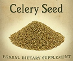 CELERY SEED - Single Herb Liquid Extract Tincture Made in the USA - $24.47+