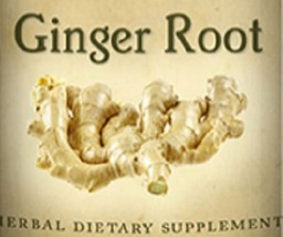 GINGER ROOT - Indigestion Nausea Circulation & Immune Support Herbal Tincture - $24.47+