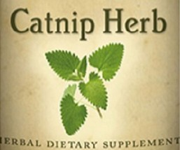 Catnip Herb Single Herb Liquid Extract Tincture Made In Usa - $24.47+