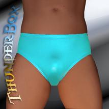 ThunderBox Lycra Spandex Arabian Blue Wrestle, Poser, Brief, Costume - S, M, L,  - $20.00
