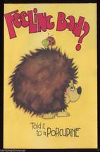 1977 PORCUPINE Frog CAT Dog MYNAH BIRD Get Well Vintage GREETING CARD Un... - $9.95